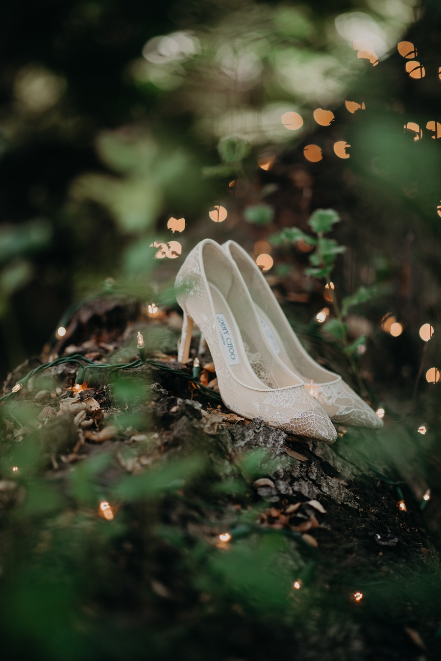 Starry Night Wedding, Julie Pepin Photography, Butterfly Floral, The Lighter Side, Bella Destinee