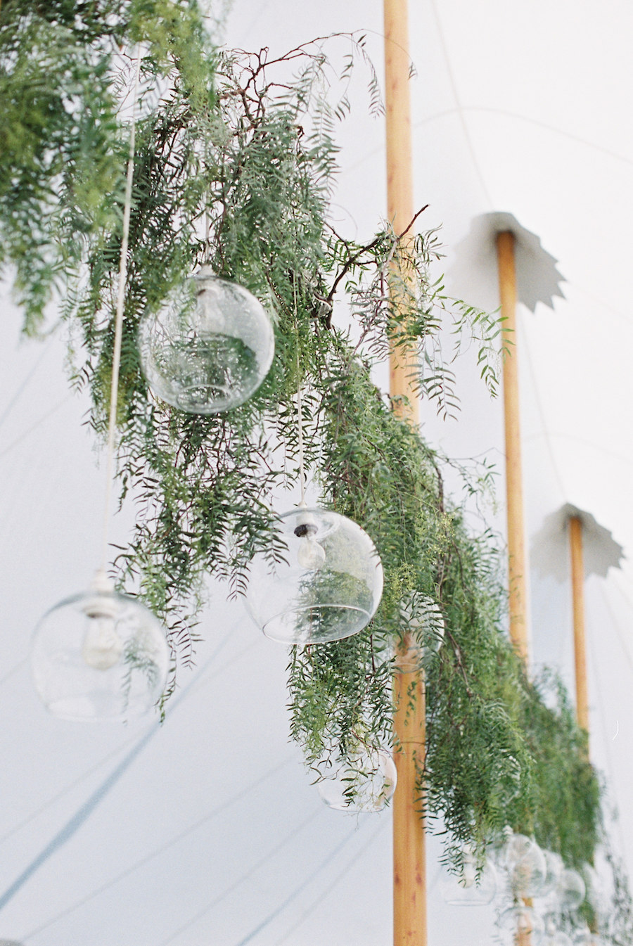 hanging string lights with leaves